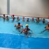 (Español) ¡A nadar!